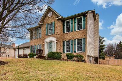 Roanoke County Single Family Home For Sale: 6008 Monet Dr