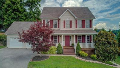 Botetourt County Single Family Home For Sale: 1365 Lakeridge Cir