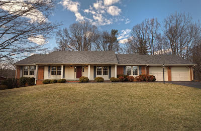 Roanoke City County Single Family Home For Sale: 929 Old Court Ln SW