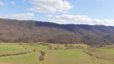 Roanoke County Residential Lots & Land For Sale: 5288 Blacksburg Rd