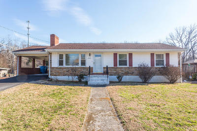 Roanoke Single Family Home For Sale: 2053 Meadowbrook Rd NW