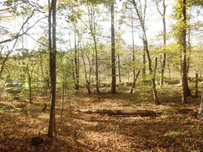 Residential Lots & Land For Sale: Lot 4 Solitude Rd