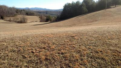 Botetourt County Residential Lots & Land For Sale: White Church Rd