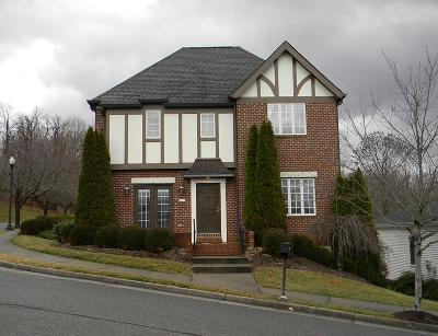 Roanoke VA Single Family Home For Sale: $399,900