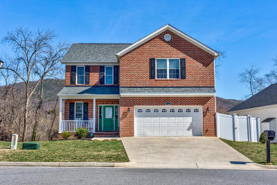 Roanoke County Single Family Home For Sale: 965 Bolejack Blvd