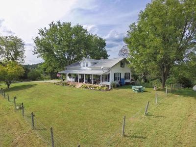 Botetourt County Single Family Home For Sale: 80 Prease Rd