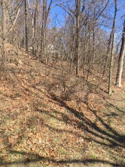 Residential Lots & Land For Sale: Sugar Loaf Mountain Rd