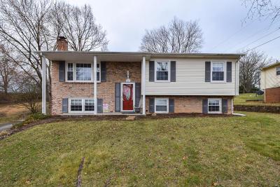 Vinton Single Family Home For Sale: 1047 Almond Dr