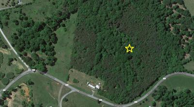 Pittsylvania County Residential Lots & Land For Sale: Tract 21 Grassland Dr