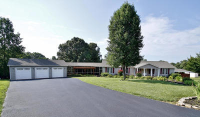 Moneta Single Family Home For Sale: 331 Browns Point Dr