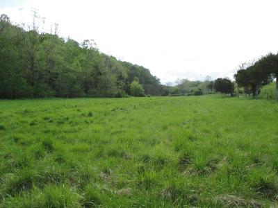 Buchanan Residential Lots & Land For Sale: Prease Rd