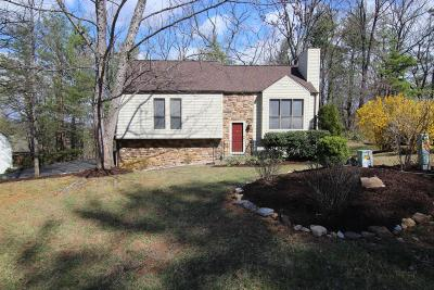Roanoke Single Family Home For Sale: 4579 Summerset Dr