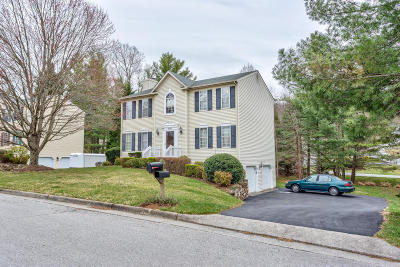 Roanoke County Single Family Home For Sale: 4658 Whipplewood Ct