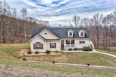 Botetourt County Single Family Home For Sale: 376 17th St