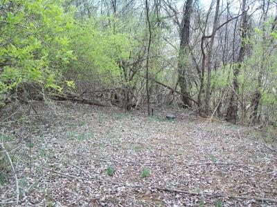 Troutville Residential Lots & Land For Sale: 66 Dooley Ln