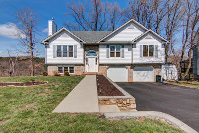Botetourt County Single Family Home For Sale: 306 Fox Fire