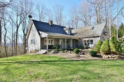Botetourt County Single Family Home For Sale: 508 Zion Hill Rd