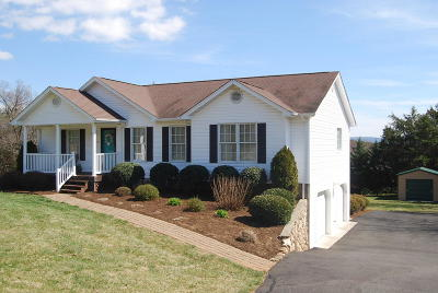 Moneta Single Family Home For Sale: 1700 Bluewater Dr