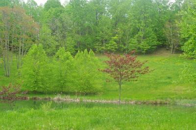 Roanoke County Residential Lots & Land For Sale: 7316 Vinyard Rd