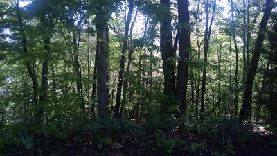 Roanoke Residential Lots & Land For Sale: 1222 Church Ave SE