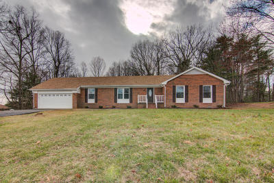 Rocky Mount Single Family Home For Sale: 45 Forest Hill Ln