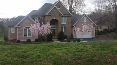 Bedford County Single Family Home For Sale: 460 Peaks View Dr