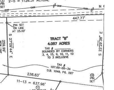 Residential Lots & Land For Sale: Back Creek Rd