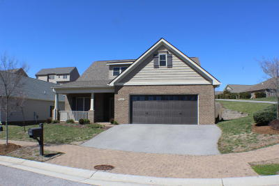 Single Family Home For Sale: 7005 Mountain Spring Trl