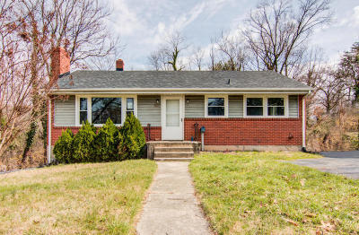 Roanoke Single Family Home For Sale: 3432 View Ave SW
