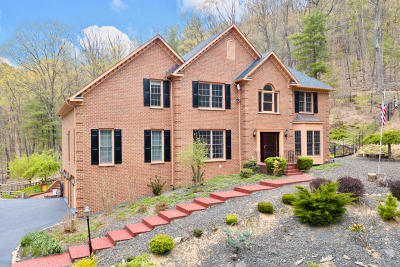 Roanoke County Single Family Home For Sale: 8206 Winterwood Trl