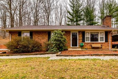 Botetourt County Single Family Home For Sale: 66 Dorseys Knoll Ln