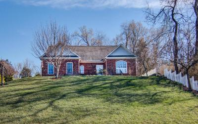 Vinton Single Family Home For Sale: 1129 Mountain View Rd