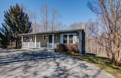 Moneta Single Family Home For Sale: 709 High Point Rd