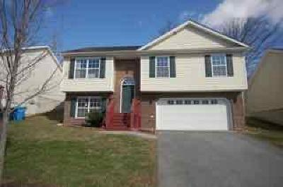 Roanoke Single Family Home For Sale: 4617 Autumn Ln NW
