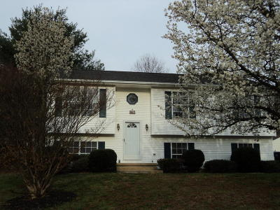 Roanoke VA Single Family Home For Sale: $184,950