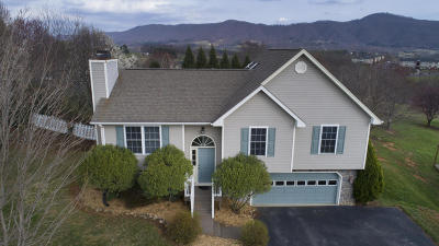 Roanoke VA Single Family Home For Sale: $224,950