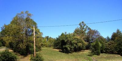 Roanoke Residential Lots & Land For Sale: 5021 Melrose Ave