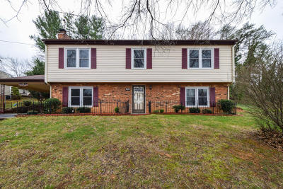 Roanoke Single Family Home For Sale: 5515 Lynn Dell Rd