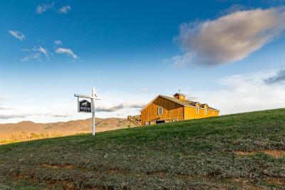 Botetourt County, Roanoke County Single Family Home For Sale: 1180 Longfield Rd