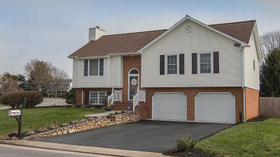 Single Family Home For Sale: 1010 Barrens Village Ln