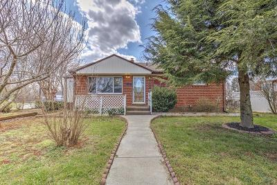 Roanoke Single Family Home For Sale: 4604 Daleville St NW