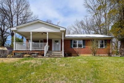 Roanoke Single Family Home For Sale: 2537 SWeetbrier Ave SW