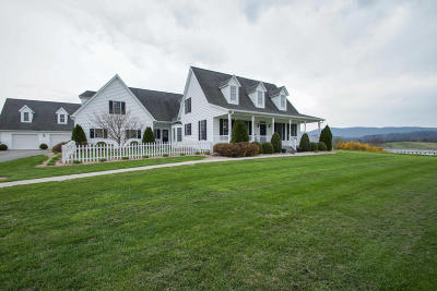 Botetourt County Single Family Home For Sale: 4513 Blacksburg Rd