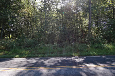 Residential Lots & Land For Sale: Coaling Rd