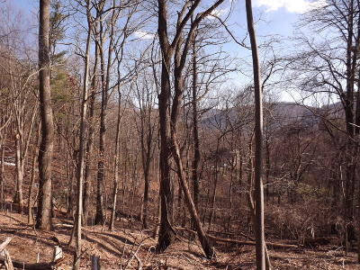 Residential Lots & Land For Sale: 5785 Lost Dr