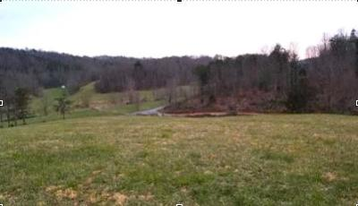Residential Lots & Land For Sale: Buffalo Run Rd