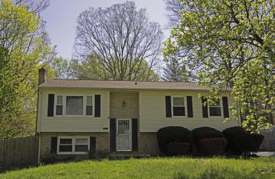 Botetourt County Single Family Home For Sale: 271 Scalybark Dr