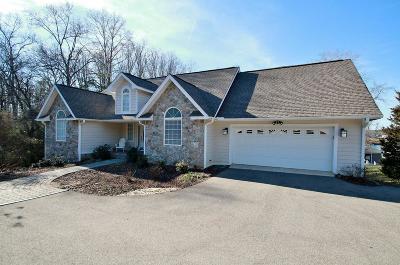 Moneta Single Family Home For Sale: 180 North Pointe Ln