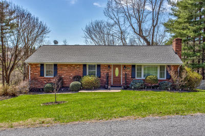 Blue Ridge Single Family Home For Sale: 158 Woodlawn Ave