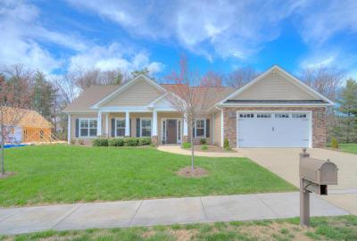 Roanoke Single Family Home For Sale: 306 Savannah Dr NE